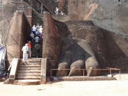 Sirigiya - accès au sommet patte lion