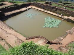 Sirigiya - bassin